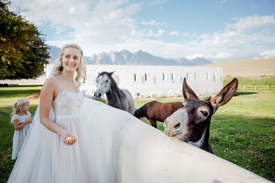 58Cape_Town_Wedding_Photographer__5018