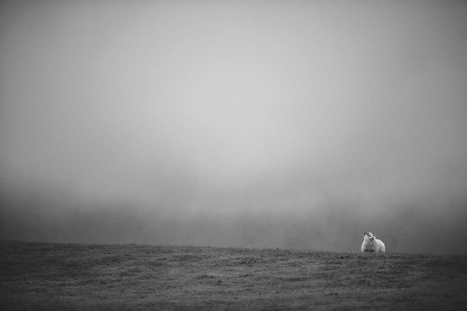 27Travel-Photographer_-Iceland_1Ring-Road_