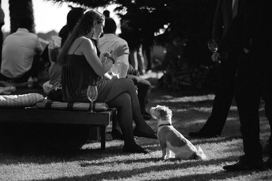 Jani B Documentary Wedding Photographer Cape Town South Africa-88