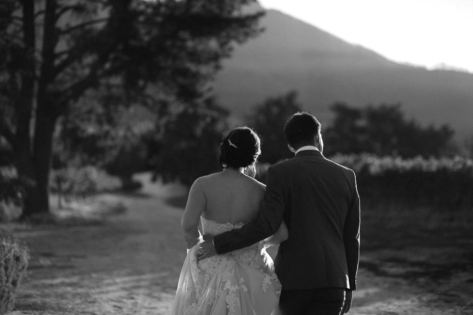 Vredeandlust_ Franschhoek_ Documentary Wedding Photographer_Jani B_Cape Town_Photography-105